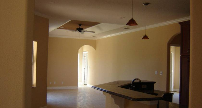 Amazing Incridible Delightful Interior Paint Color