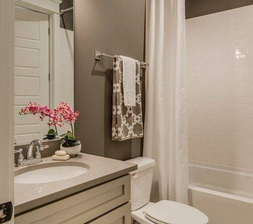 Best Bathroom Colors Ideas Pinterest Guest
