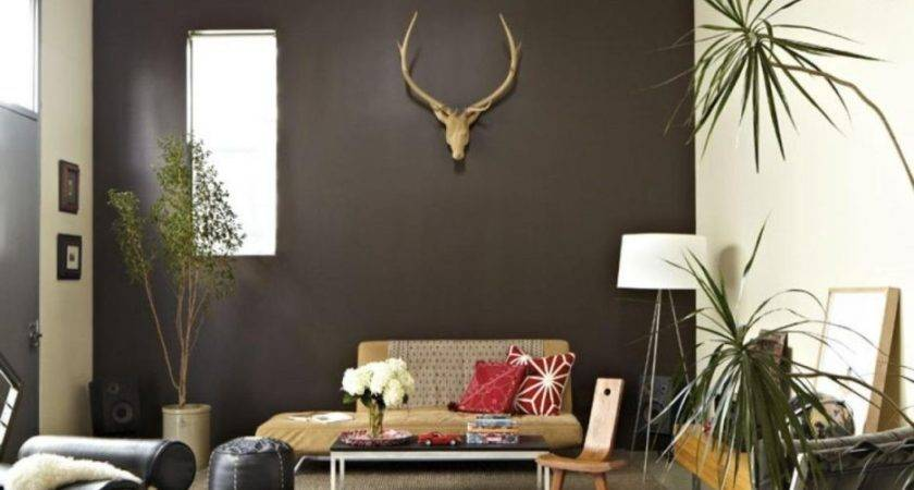 Best Chocolate Walls Ideas Pinterest Accent Wall
