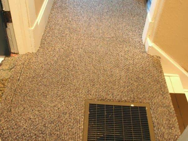 Best Ripping Carpet Ideas Pinterest Stairs