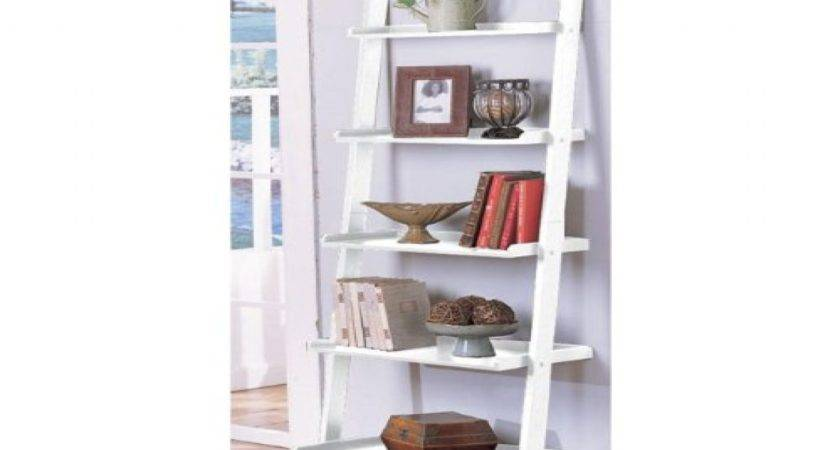 Bookshelf Astonishing Ladder Bookcase Ikea Bookcases