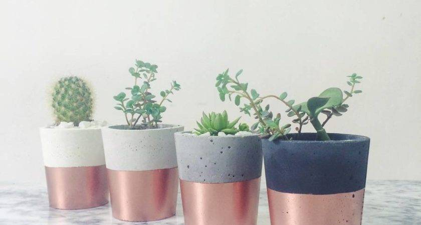 Cement Copper Plant Pots Craftbnb
