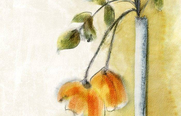 Corel Painter Demo Real Watercolor Brushes
