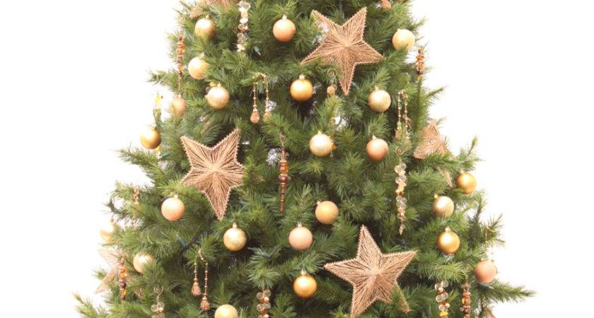 Decoration Ideas Small Christmas Tree Green Brown
