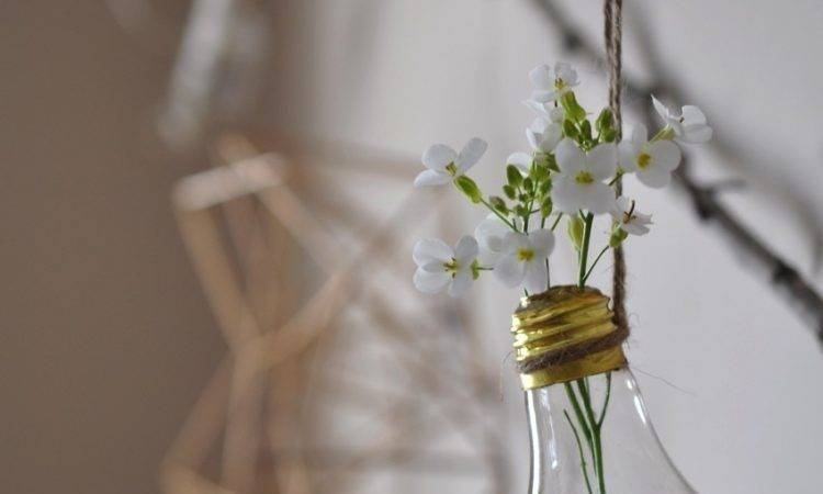 Diy Hanging Light Bulb Flower Vases Notey