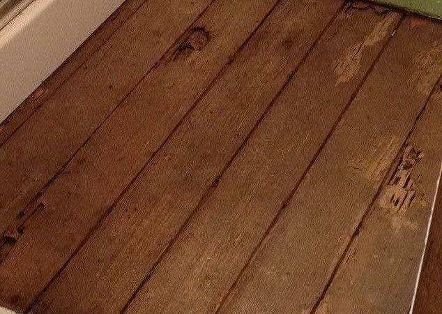 Diy Plywood Flooring Hometalk