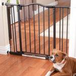 Dog Gates Safeguard Your Youngsters Well Valuables