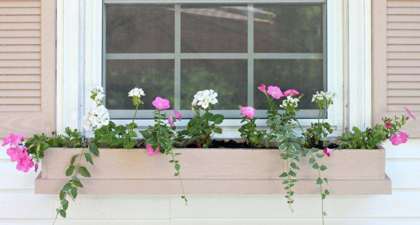 Easy Inexpensive Diy Window Boxes Love Home