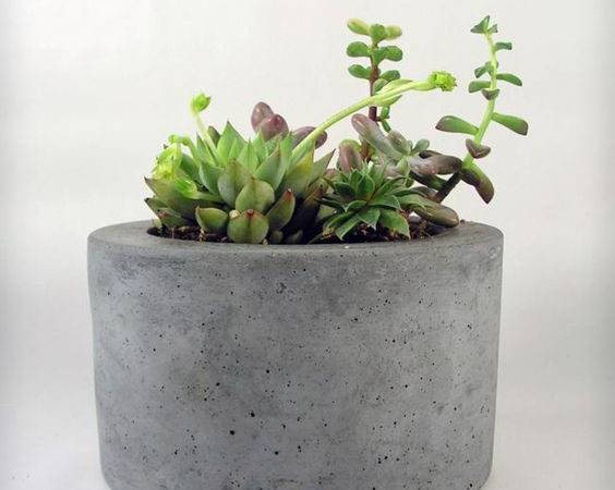 Easy Pieces Portable Concrete Pots Gardenista