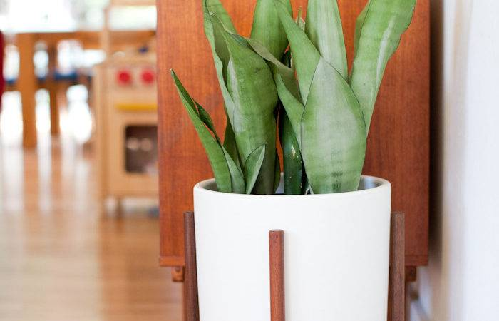Giveaway Mid Century Modern Planter Modernica