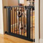 Guide Best Dog Gates Woof Whiskers