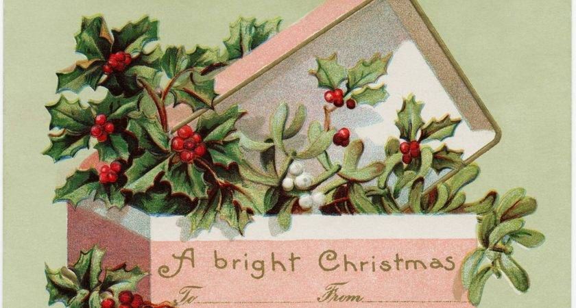 Holly Berries Pink Box Graphic Old Design