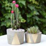 Hometalk Make Concrete Planters
