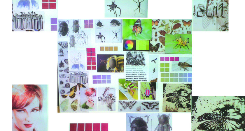 Joel Wright Insect Project Just Blog Thingumajig