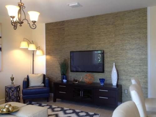 17 Inspiring Tv Accent Wall Photo Gabe Amp Jenny Homes