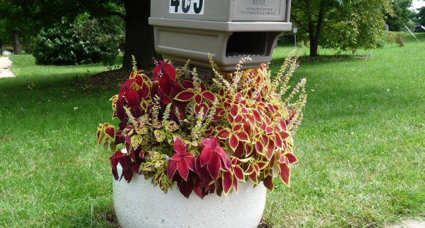 Mailbox Garden Plans Glassblowing Furnace Crucible Flower