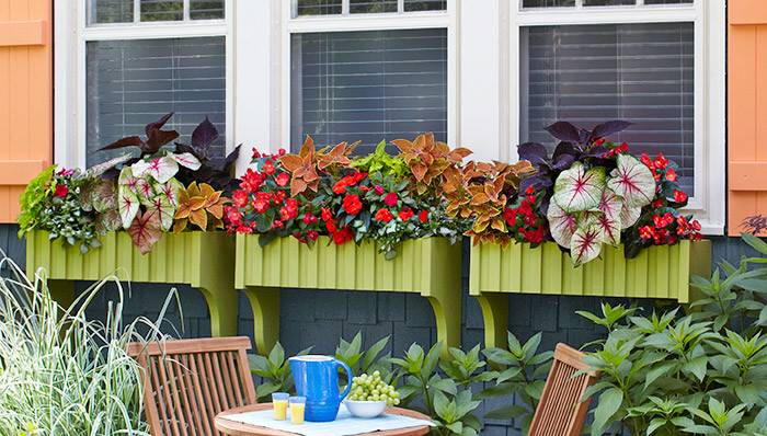 Make Install Window Boxes