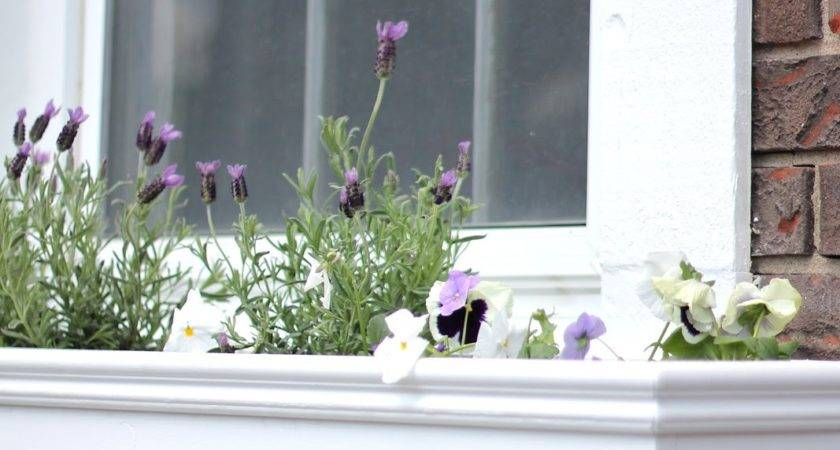 Make Window Boxes Diy Planters Add