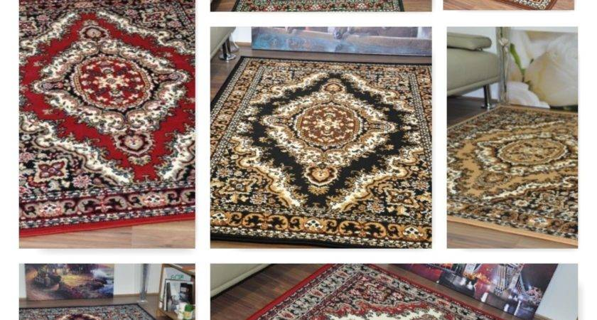 New Extra Large Modern Traditional Medallion Area Rugs