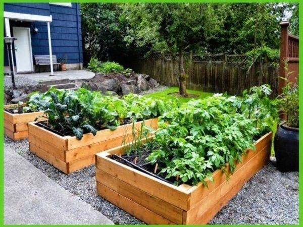 Pallet Raised Garden Beds Ideas Recycled