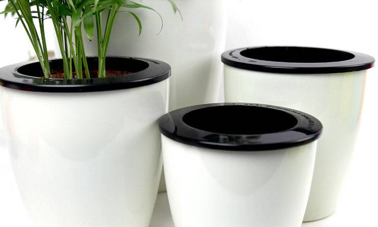 Pcs Self Watering Planter Automatic Plant Pots