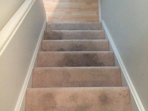 Refinish Carpeted Stairs Part Cuckoo Design