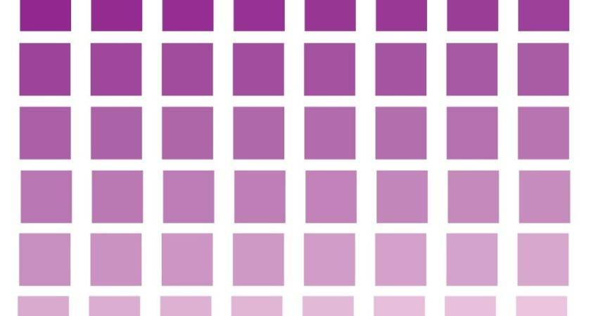 Smartly Purple Paint Associated Then Shades