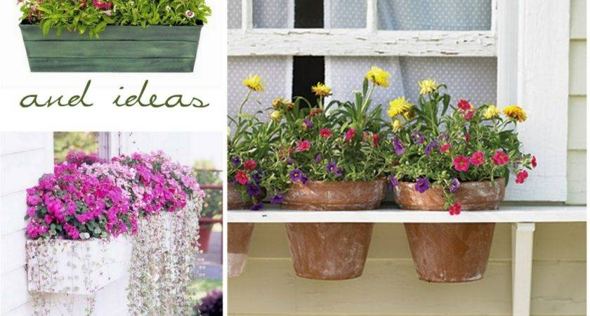 Someday Crafts Diy Window Boxes