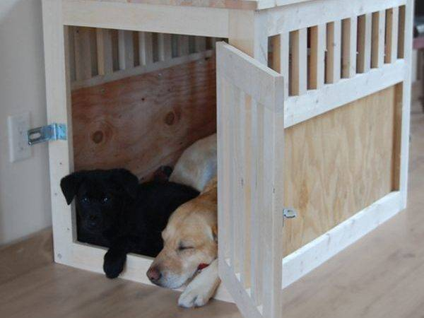 Stylish Dog Crates Your Cute Furry Friend Can