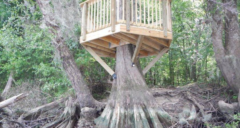 Treehouses Built Our Customers Diy