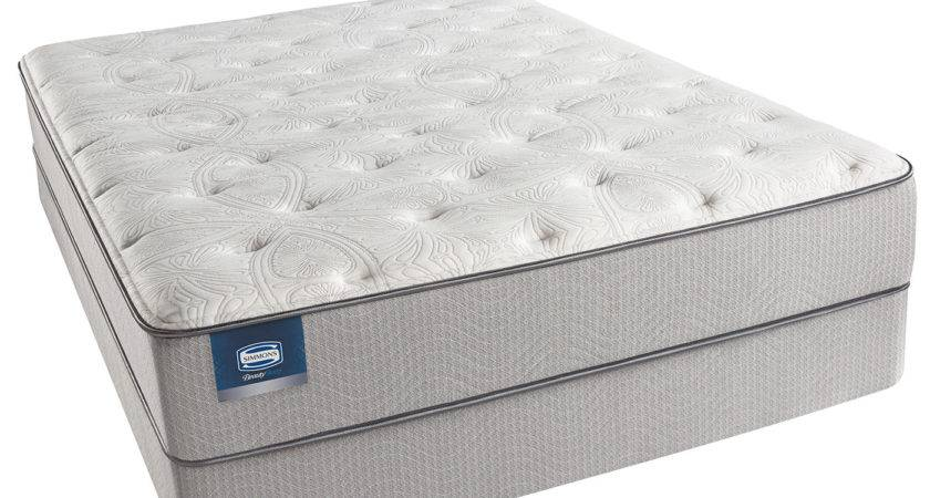 Twin Mattress Box Spring Sealy Backsaver