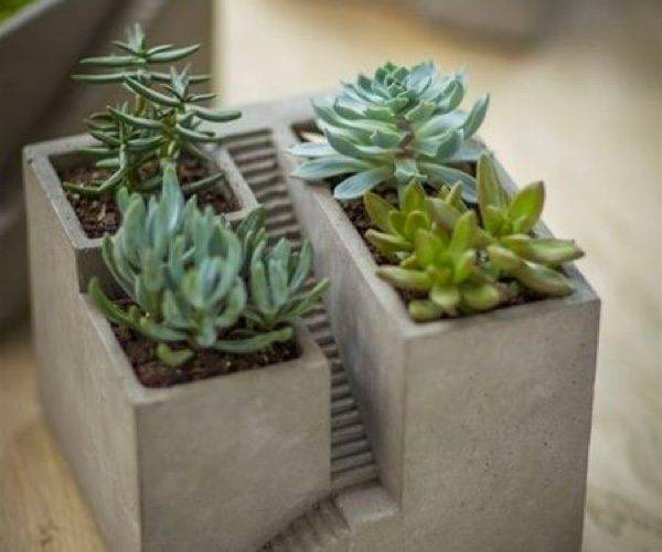 Uniquely Beautiful Concrete Planters