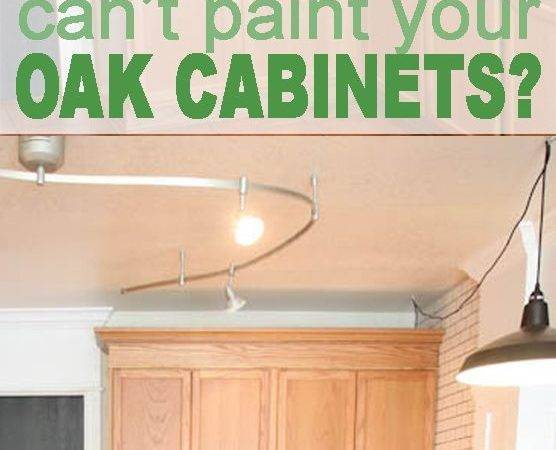 Updating Oak Kitchen Cabinets Without Painting Trends